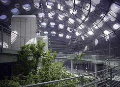 Renzo Piano - Green Museum, new California Academy of Sciences, San Francisco (Golden Gate Park)