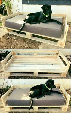 Beautiful wooden pallet dog bed projects - Our shine - pallets . - Beautiful wooden pallet dog bed projects – our shine – pallets … – Dogs – - Wooden Dog Crate, Wooden Dog Kennels, Diy Dog Kennel, Diy Dog Bed, Wooden Pallets, Kennel Ideas, Wood Dog Bed, Dog Bed Frame, Puppy Kennel