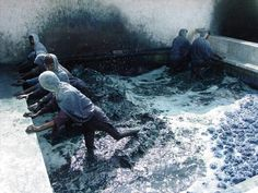 Indigo dye bath, India