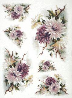Rice Paper for Decoupage Decopatch Scrapbook Craft Sheet Vintage Chrysanthemum