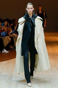 Céline Fall 2017 Ready-to-Wear Fashion Show - Elien Swalens