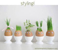 Ostergras gepflanzt in entleerte Eier.