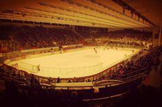 České Budějovice | Budweis in Jihočeský Hockey, Places, Field Hockey, Lugares, Ice Hockey