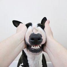 Tan sonriente!!