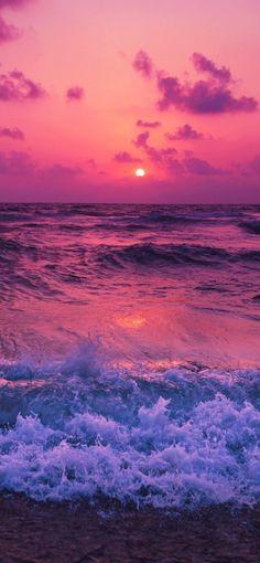 Aquatic Sunset