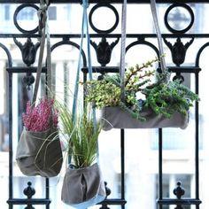 Un+balcon+qui+s'habille+de+jardinières