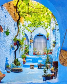 The Blue City in Chefchaouen Morocco Cool Places To Visit, Places To Travel, Travel Destinations, Wonderful Places, Beautiful Places, Beautiful Flowers, Photos Voyages, Belle Photo, Vacation Trips