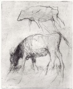 etching and drypoint Images Of Cows, Drypoint Etching, Moon Illustration, Etchings, Figure Drawing, Animal Drawings, Art Lessons, Printmaking, Artworks