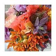 Online winkelen - Oogenlust, bloemisten met stijl, Veldhoven