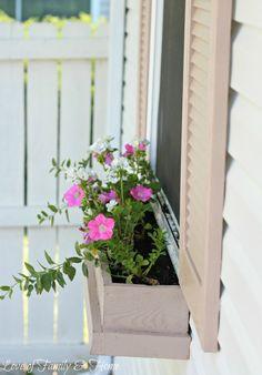 Jardiniere devant fenêtre avec des fleurs typiquement printanières