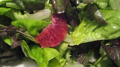 Healthy Salads - Bibb Lettuce and Watercress with Lemon-Mint Dressing Recipe - Easy Salads, Healthy Salads, Healthy Cooking, Healthy Eating, Diabetic Recipes, Healthy Recipes, Watercress Salad, Balanced Meals, Vegetable Salad