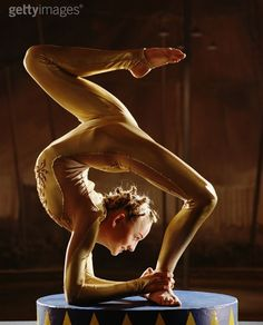 contortionist - Google Search