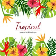 Exotic floral background Free Vector