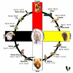 Sundance Animal Medicine Wheel (NOT a traditional Native American system of astrology but rather an invented system created by Sundance)