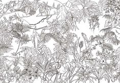 Original Wallpapers & Limited Edition Wall Decor: Ohmywall Jungle Wallpaper Tropical Black and White Panoramic by Caddous & amp; Deco Boheme Chic, Stencil, Wall Of Fame, Original Wallpaper, Wall Wallpaper, Diy Craft Projects, Botanical Prints, Line Drawing, Color Pop