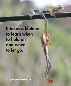it takes a lifetime to learn when to hold on and when to let go.