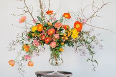 poppies & citrus fruit, by honey of a thousand flowers, photo by kate osborne