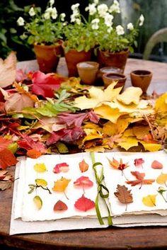 perfect fall activity #fallactivity #fall #outdoor