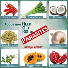 Foods that help get rid of parasites