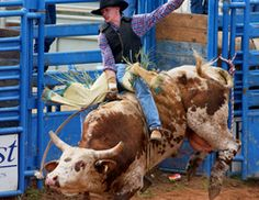 Bull riding is one of the most popular rodeo events all round Oklahoma.