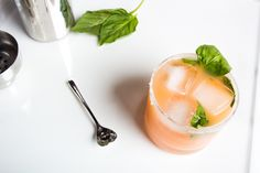 Salty Basil Dog - The Life Styled