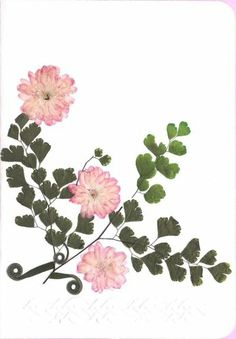 Pressed Flower Gifts | Cards and Bookmarks