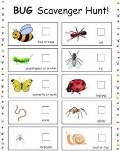 5 Backyard Games You've Never Played, But Should. Free Preschool, Preschool Science, Preschool Printables, Science Activities, Preschool Activities, Preschool Bug Theme, Summer Preschool Themes, Insect Crafts, Bug Crafts
