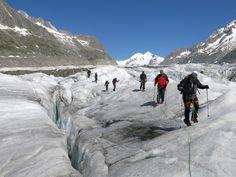 Gletschertrekking Grosser Aletschgletscher - Bergführer in Ausbildung Urs Horath