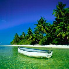 'Tüm günümü gözlerden uzak bir sahilde geçirmek istiyorum' diyenler kimler?