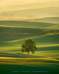 Layers (Palouse, Washington) by Koveh Tavakkol / 500px
