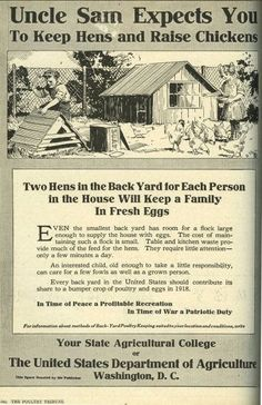 Neat vintage ad encouraging folks to keep backyard chickens