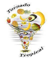 7998ee0259 Clique na imagem para ver a Camiseta Tropical Tornado criada por Adriana  Marcílio na Vandal.