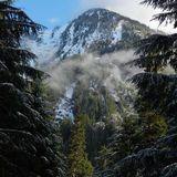 Monte Cristo Trail, Darrington WA | 550ft gain | 10mi out and back