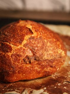 Easy No-Knead Artisan Bread Recipe: Video
