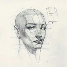 Reilly Head Abstraction method, portrait from imaginationDiscover The Secrets Of Drawing Realistic Pencil Portraits.Let Me Show You How You Too Can Draw Realistic Pencil Portraits With My Truly Step-by-Step Guide.Learn To Draw A Realistic Rose - Draw Anatomy Sketches, Anatomy Drawing, Anatomy Art, Drawing Sketches, Pencil Drawings, Face Anatomy, Horse Drawings, Pencil Art, Art Drawings