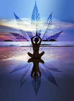CANNABIS Y YOGA