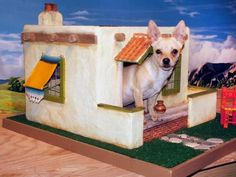27 Innovative Doghouse Designs : Toto's builder made his home in the authentic architectural style of a true pueblo home including wood posts (vigas), stucco siding and a terra-cotta floor on the inside. From DIYnetwork.com