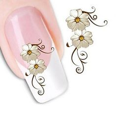 Kaifina Water Transfer Printing Nail Stickers XF1013 -- Continue to the product at the image link.