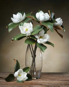 Small Bloom Magnolia Silk Flower Stems at Petals Office Scapes Direct Exotic Flowers, Faux Flowers, Silk Flowers, White Flowers, Beautiful Flowers, Rose Flowers, Yellow Roses, Purple Flowers, Colorful Flowers