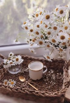 Comfort Spring's Pursuing a Natural Lifestyle. 501 likes. Life Is Beautiful, Beautiful Flowers, Beautiful Pictures, Flower Girl Photos, Brown Aesthetic, Flower Aesthetic, Aesthetic Food, Foto Instagram, Coffee Photography