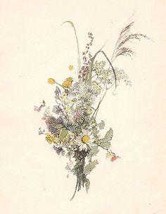 Scandinavian Summer Flowers by Carl Larsson (1853-1919).