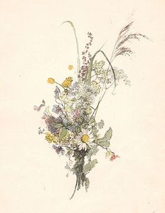 Flowers by Carl Larsson (1853-1919).