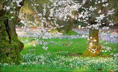 Baumblüten und Schneeglöckchen im Februar - Jahreszeiten - Galerie - Community
