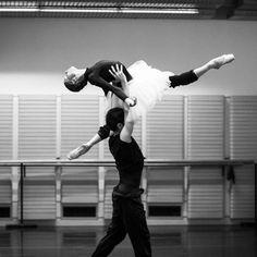 birdasaurus: The Australian Ballet