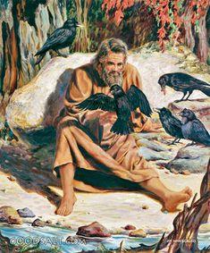 Bible Photos, Bible Pictures, Jesus Pictures, Elijah Bible, 1 Kings 17, Bible Tattoos, Religion, Christian Artwork, Bible Illustrations