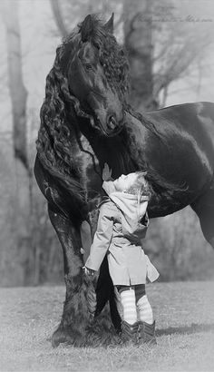 Little girl admiring beautiful Friesian in Poland • Gosia Mąkosa Equine Art & Photography on Facebook