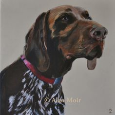 Alan Moir. Mr Biggs - acrylic on canvas. www.facebook.com/alan.moir.portraits