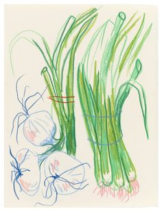 """ljegers: """"Onions from Tuesday (items I didn't draw/sell: peppers, potatoes, scallions, onions). Art Sketches, Art Drawings, Illustrations, Illustration Art, Art Challenge, Aesthetic Art, Art Inspo, Painting & Drawing, Line Art"""