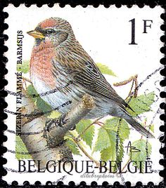 Belgium.  SIZERIN FLAMME .  BIRD TYPE OF 1975.  FRANC DENOMINATED. Scott 1432 A524, Issued 1992 June,  Perf. 11 1/2,  1F. /ldb.