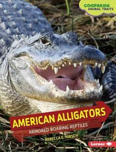 American Alligators: Armored Roaring Reptiles